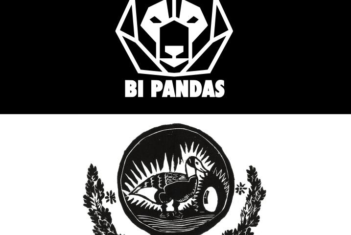Bi Pandas / Goose Green Solidarity fund logo
