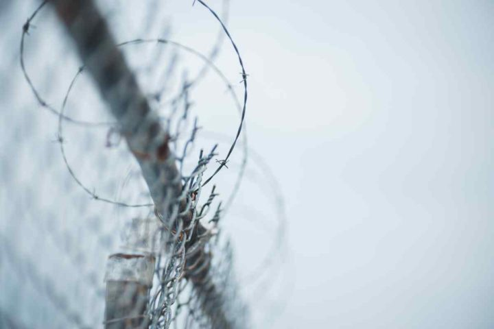Image shows a barbed wire fence